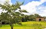 Hotel Fazenda Parque do Avestruz - Thumbnail 27