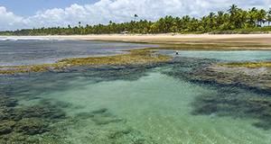 Pacote Península de Maraú